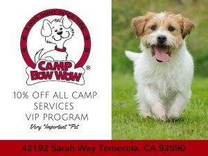 Camp Bow Wow Temecula